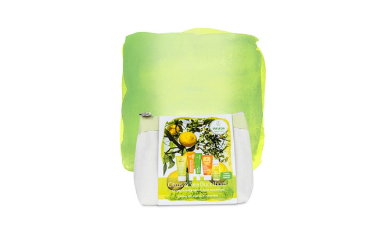 Citrus Travel Kit