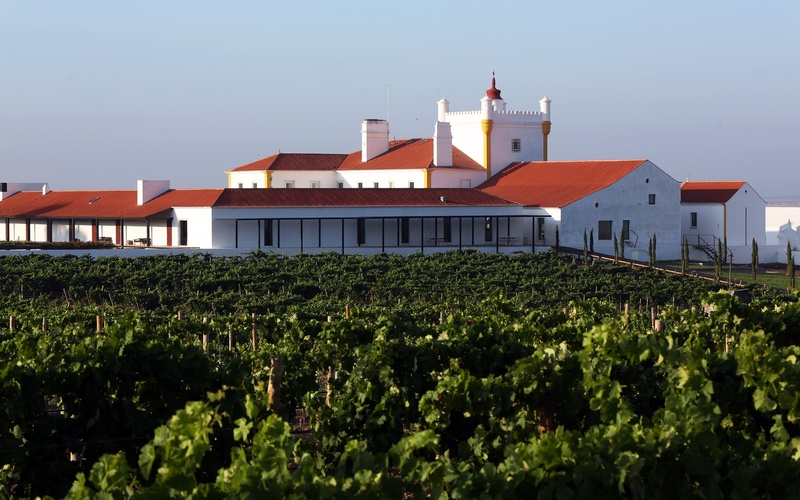Winery Destinations