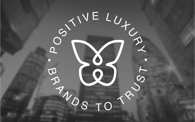 Friends of<br> Positive Luxury
